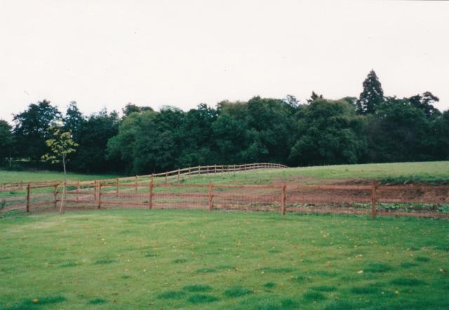 The garden at Little Court House 2