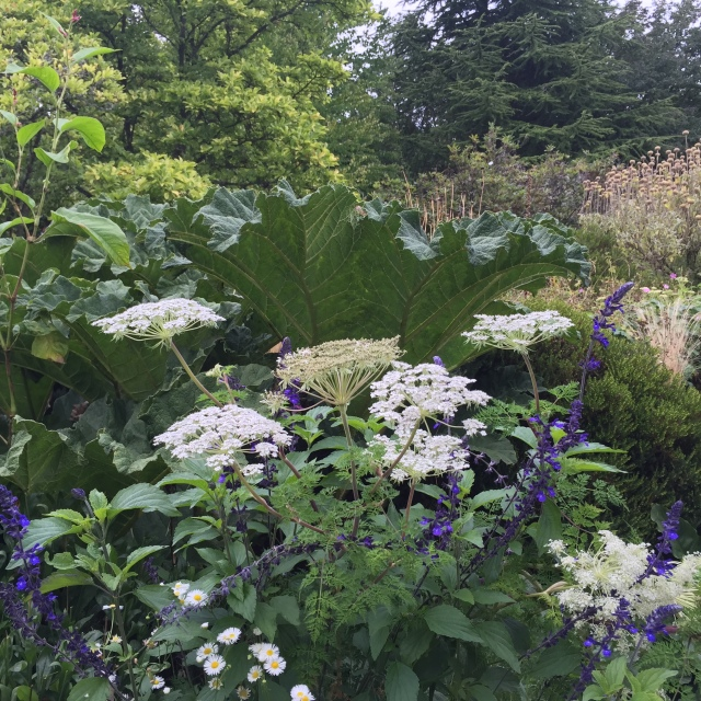 The Garden at Gravetye Manor