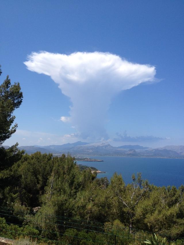 Genie cloud...